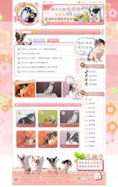 娃娃狗網站:迷你吉娃娃專業犬舍 網站設計/製作